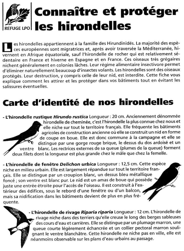 Fiche LPO: Les Hirondelles page 1