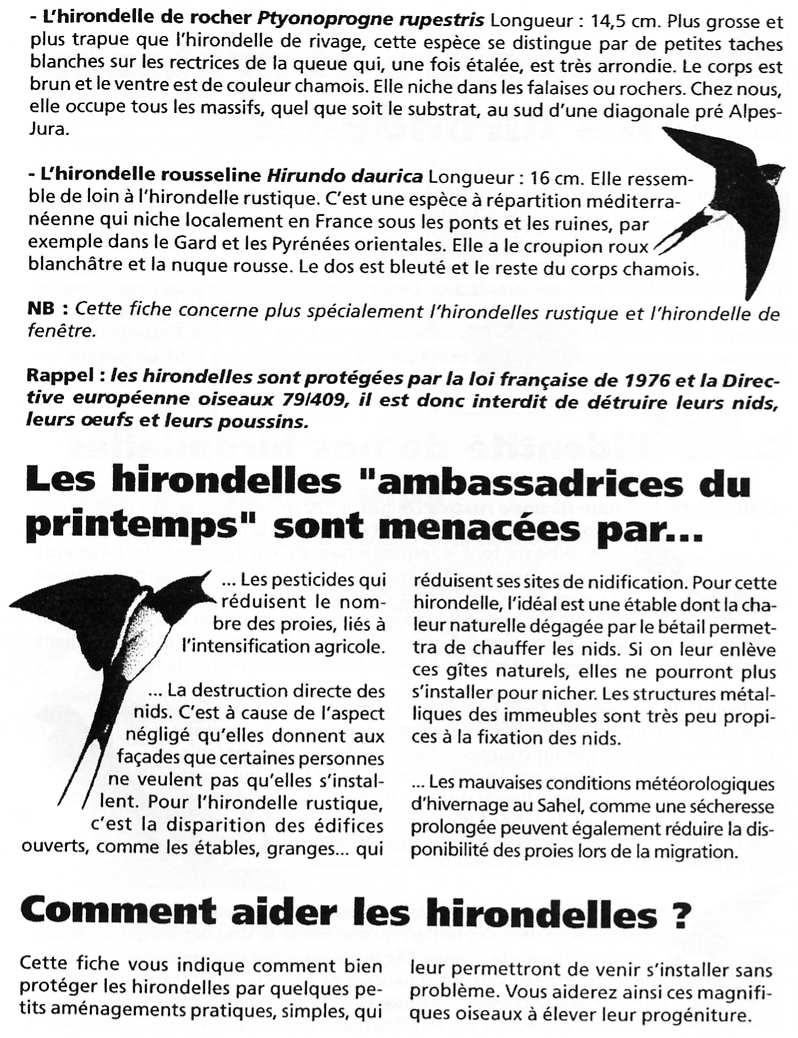 Fiche LPO: Les Hirondelles page 2