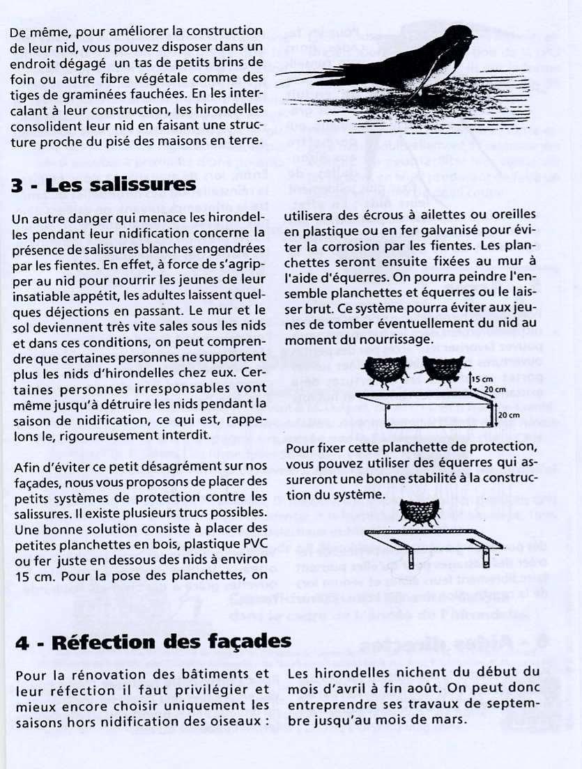 Fiche LPO: Les Hirondelles page 4