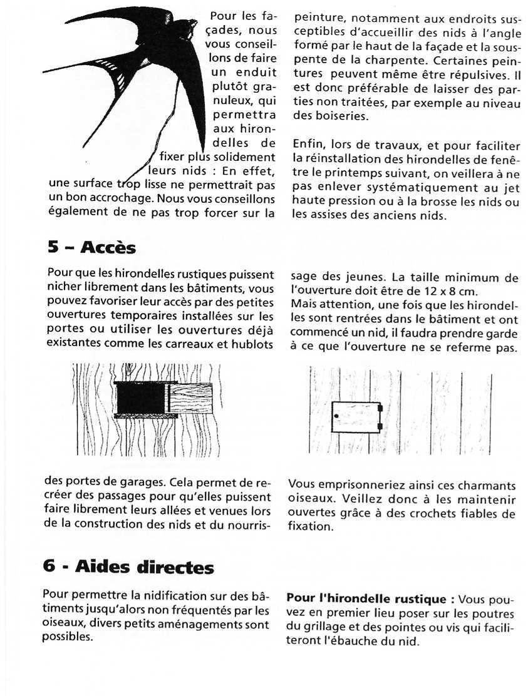 Fiche LPO: Les Hirondelles page 5